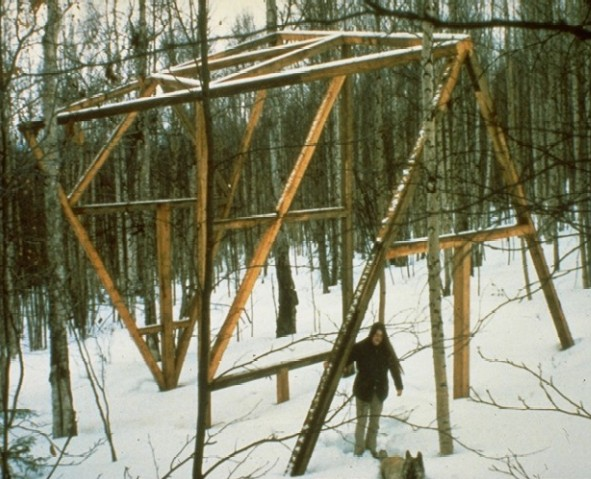 Timber frame for Mark's House in 1973: a girl friend, a dog and the start of a house, a very good year. ■